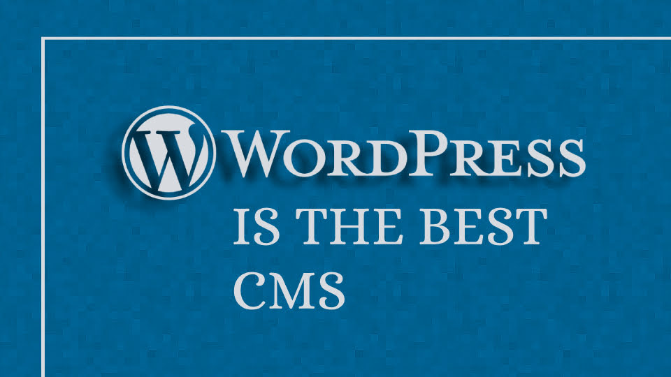 5 Reasons Why WordPress is Best CMS for your Business Website